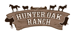 Ranch-logo-fertig