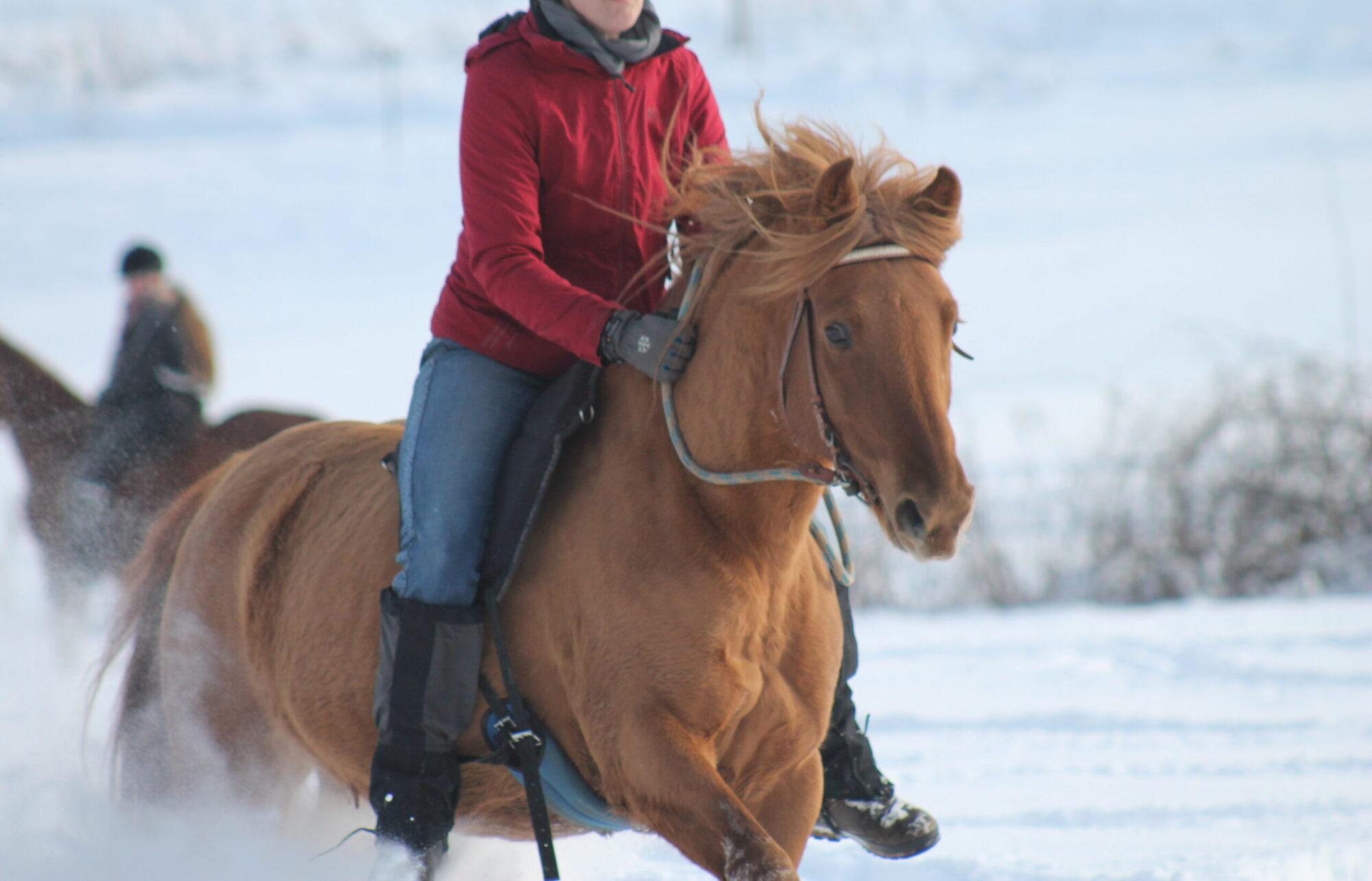 Hunter Oak Ranch
